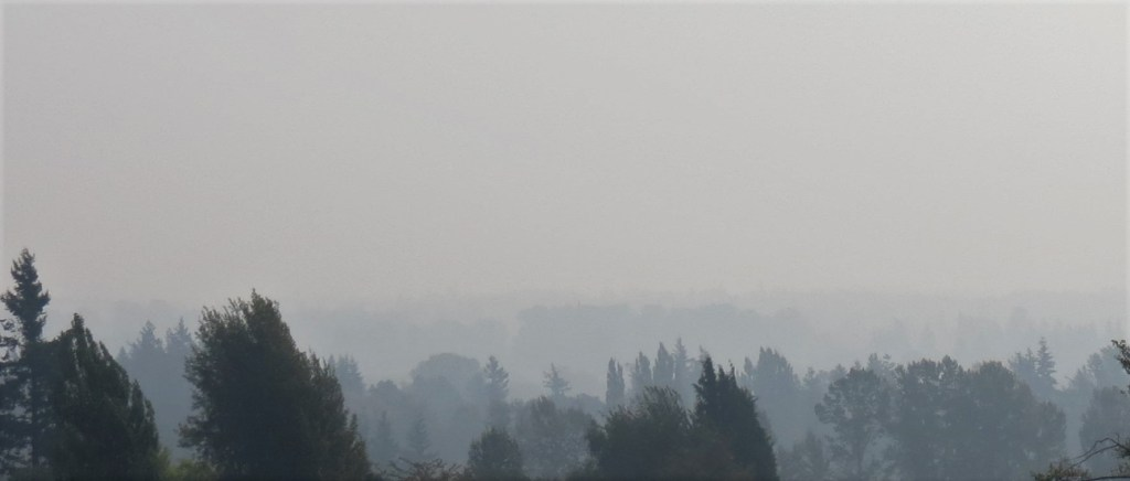 A haze of wildfire smoke is visible across eastern Ferndale (September 11, 2020). Photo: My Ferndale News