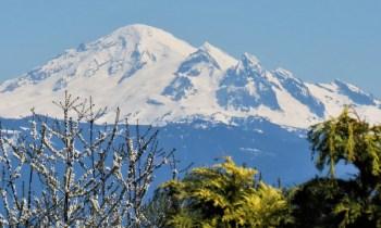 Mount Baker seen from Ferndale (April 19, 2021). Photo: Whatcom News