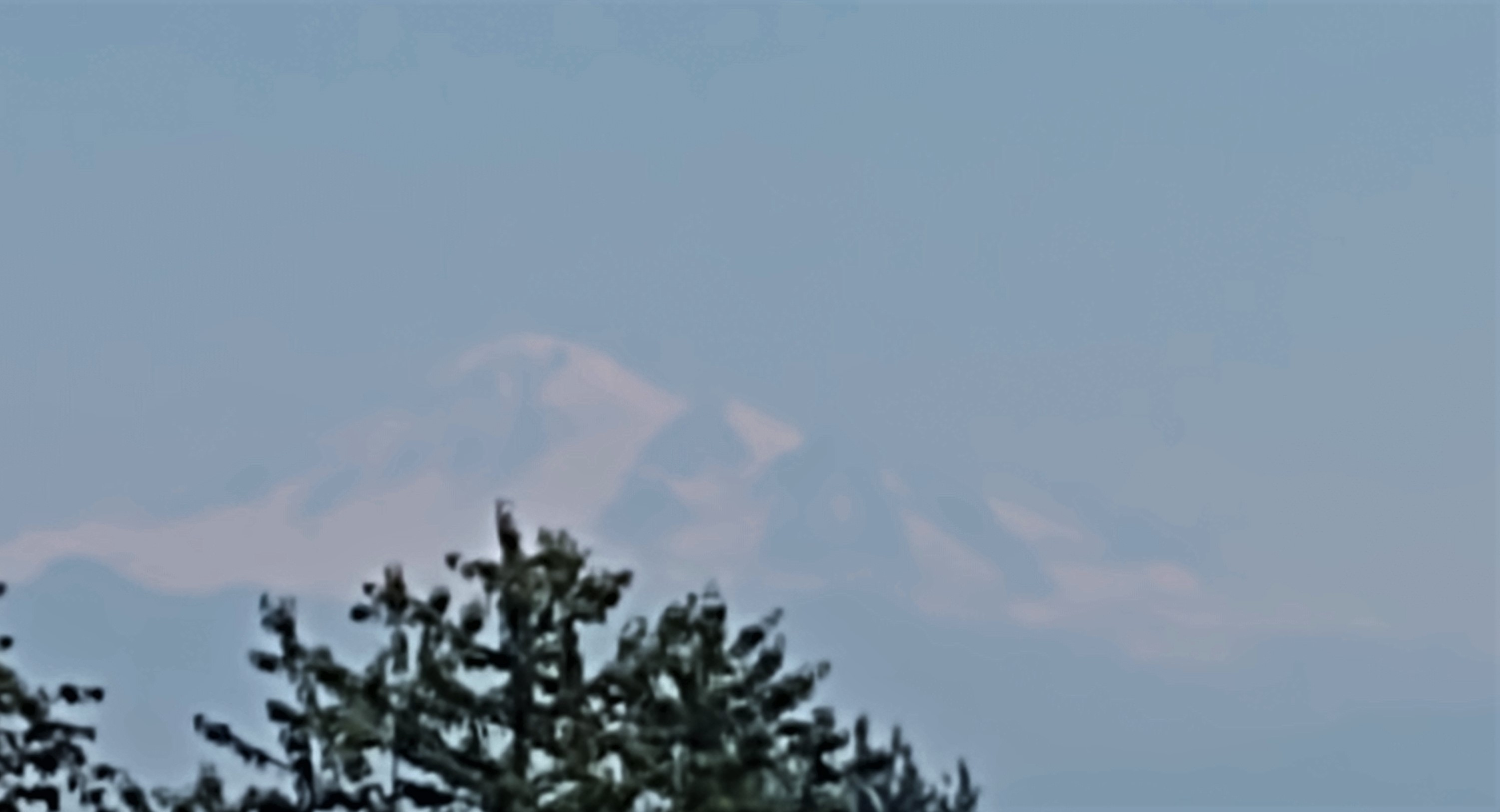 Haze is visible while viewing Mt Baker from Ferndale (June 28, 2021). Photo: Whatcom News