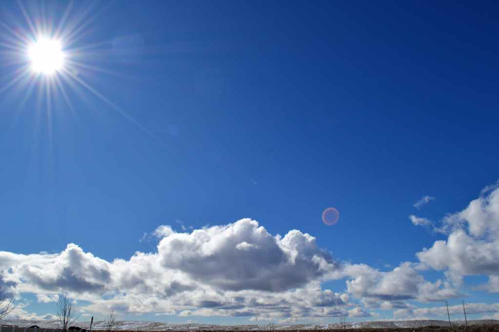 landscape photograph of skies