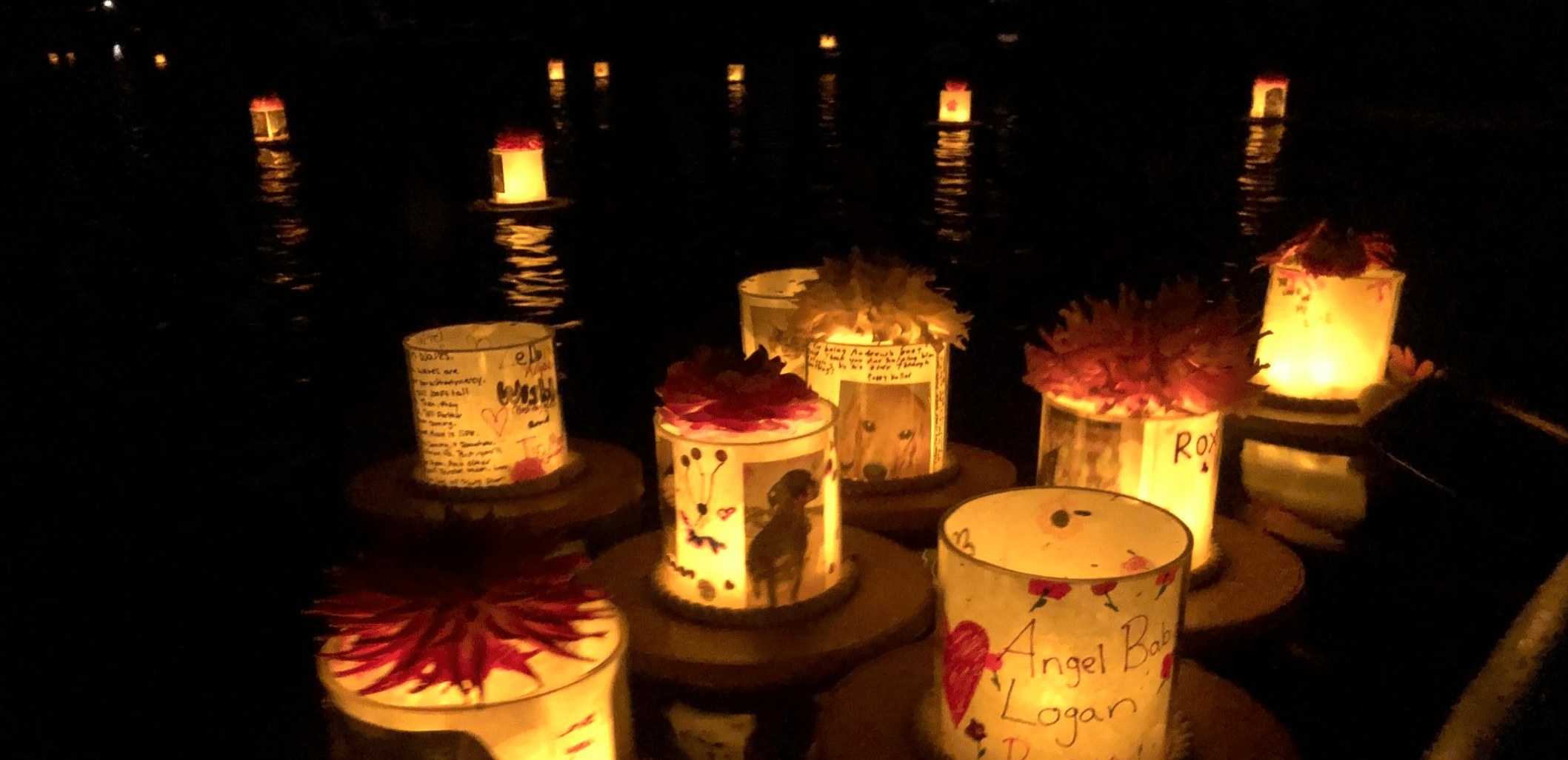 Floating Lantern Pet Memorial on Lake Whatcom. Photo courtesy of Radiant Heart After-Care for Pets