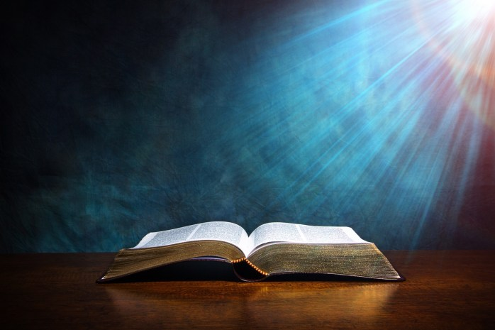 Search the Word of God