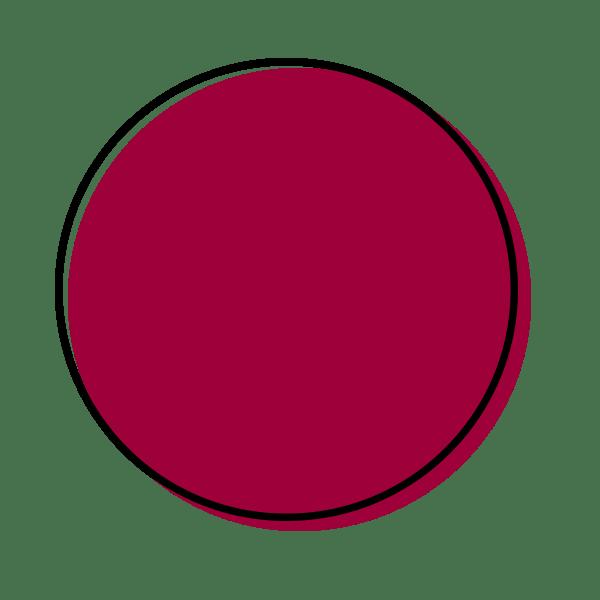 Dot Icon Berry
