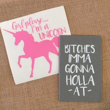Pink Unicorn and Bitches Book