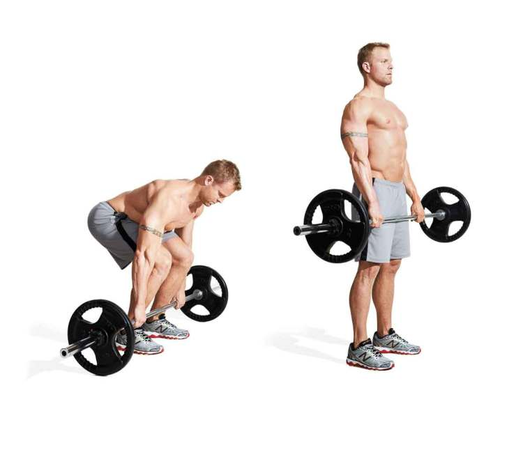 grow muscles faster