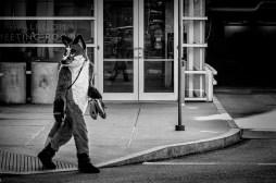 Fur Crossing