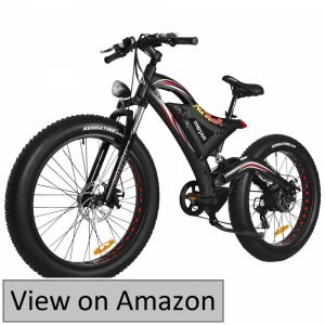 Addmotor Motan 750W Electric Bicycles