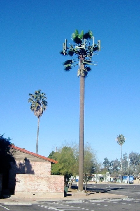 palm-cell-tower-960