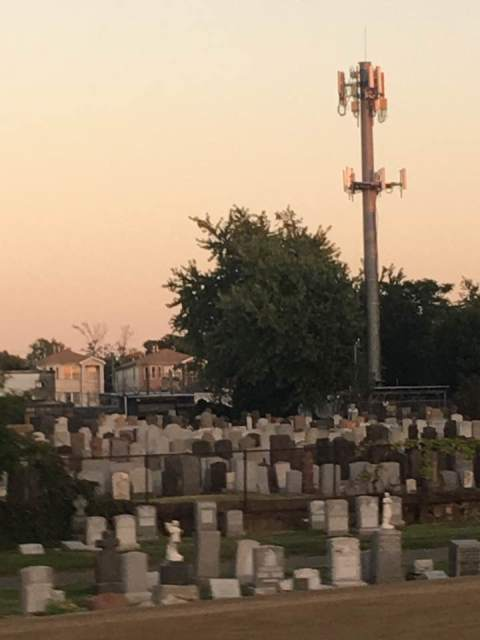 Cell tower in graveyard