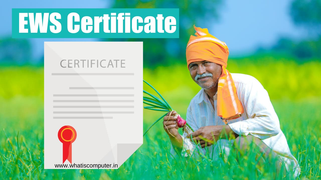 what-is-EWS-Certificate