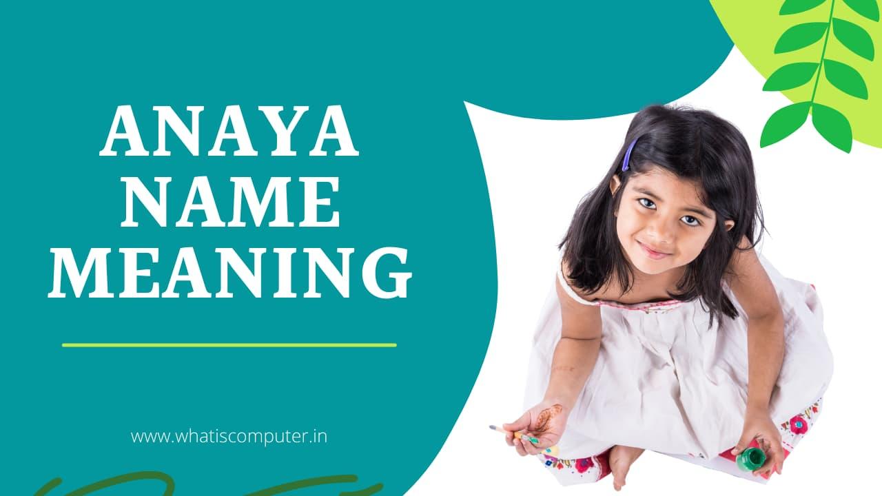 Anaya-Name-Meaning