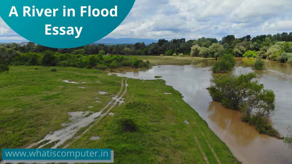 Essay on A River in Flood