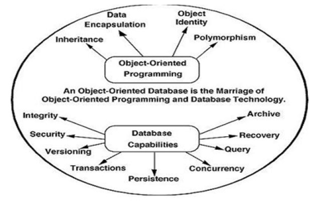 Types And Classification Of Database Management System