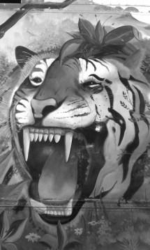 Wp White Tiger Post 17