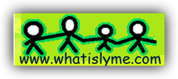 What is Lyme