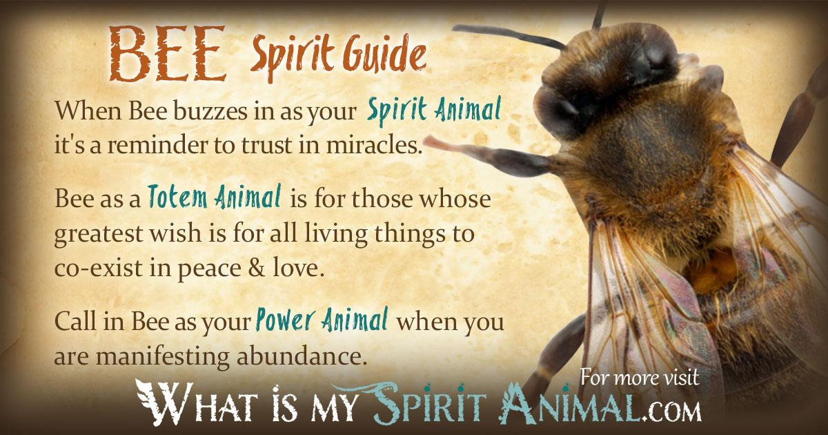 Bee Symbolism & Meaning   Spirit. Totem & Power Animal