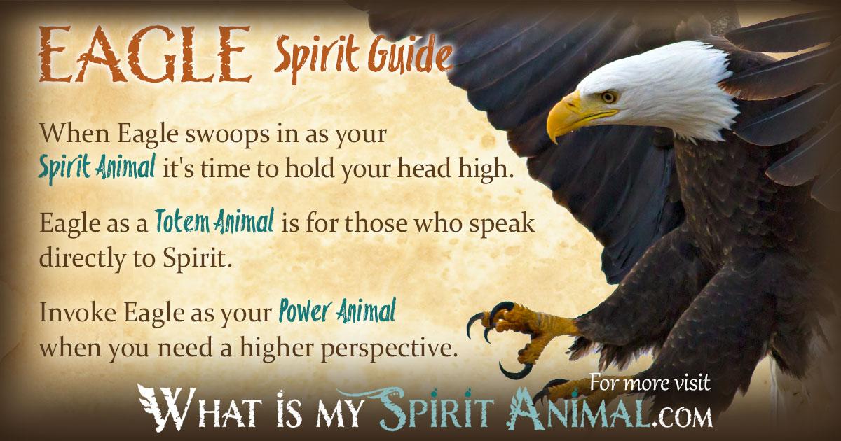 Eagle Symbolism & Meaning   Spirit. Totem & Power Animal