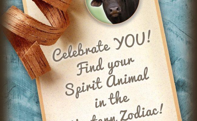 What Is My Spirit Animal By Birthday Zodiac Animals Birth Animal Totems