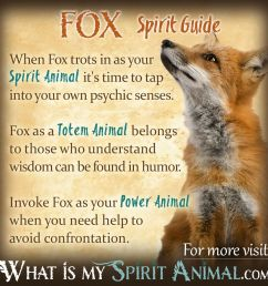 fox symbolism meaning [ 1200 x 1200 Pixel ]