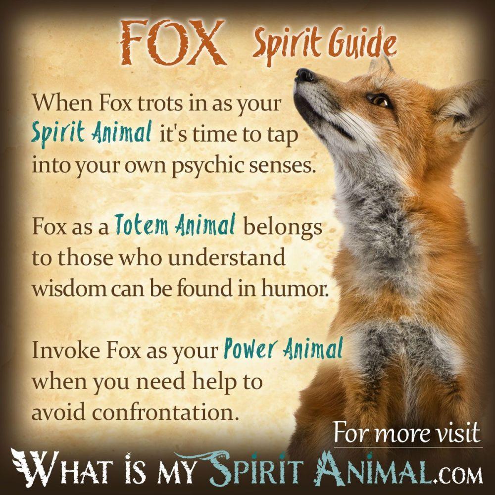 medium resolution of fox symbolism meaning