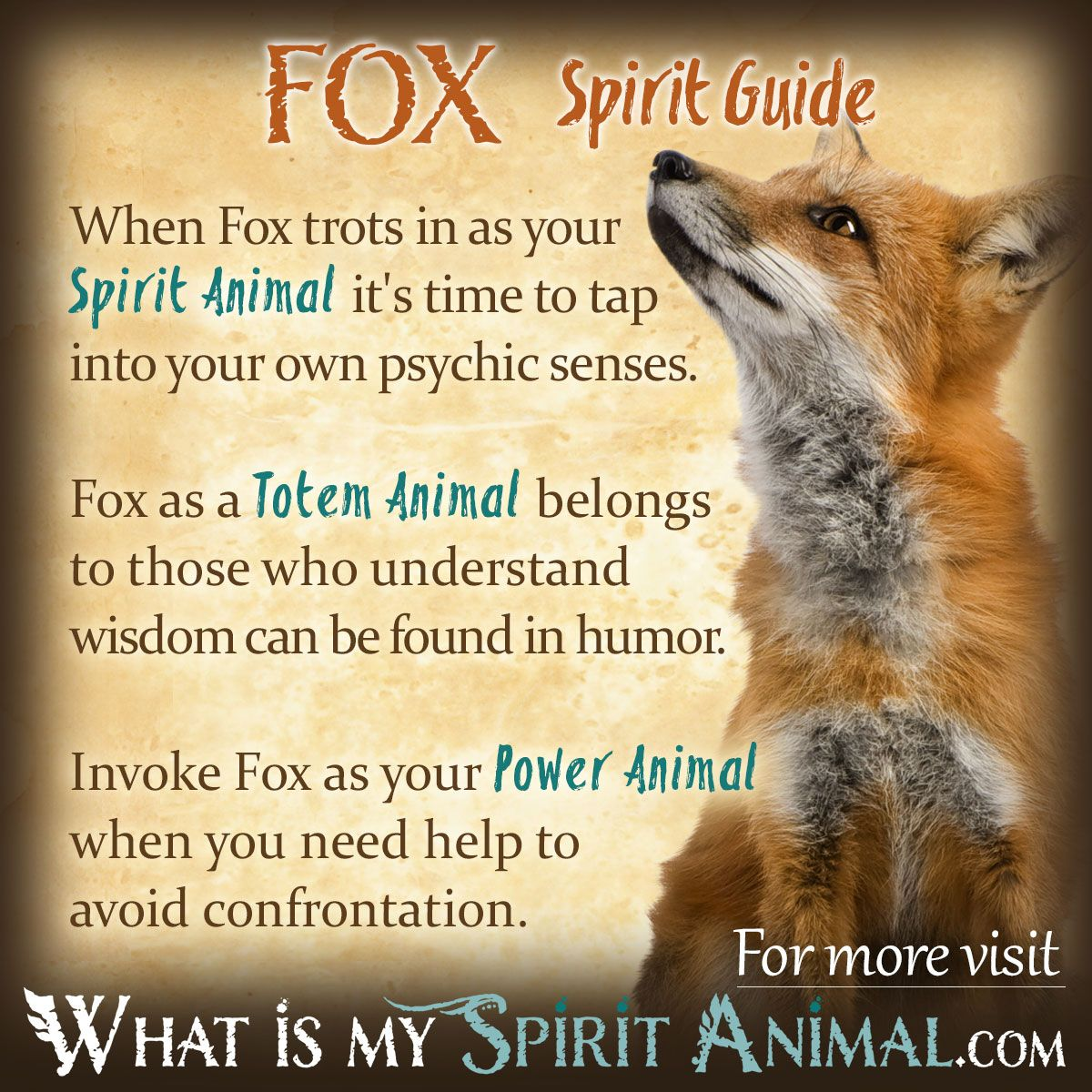 hight resolution of fox symbolism meaning