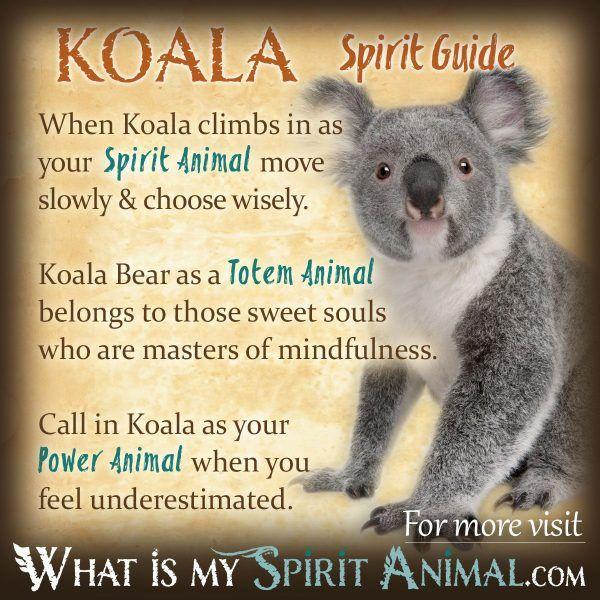 Mammal Symbolism & Meaning   Spirit. Totem. & Power Animal