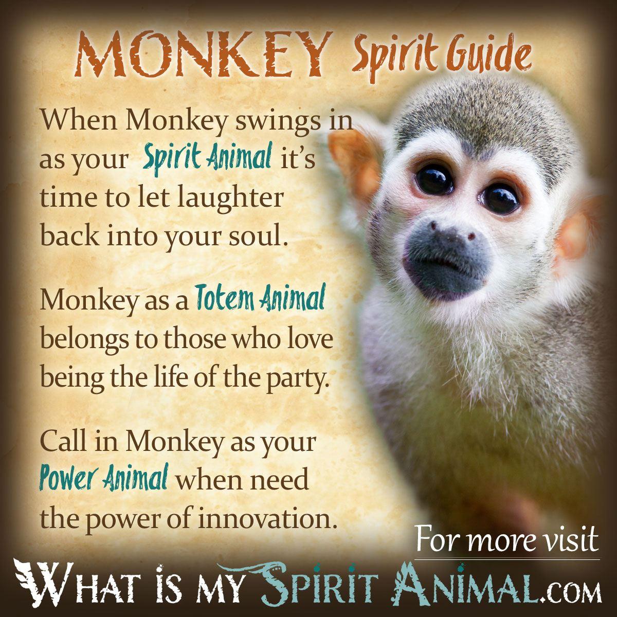 monkey symbolism meaning spirit