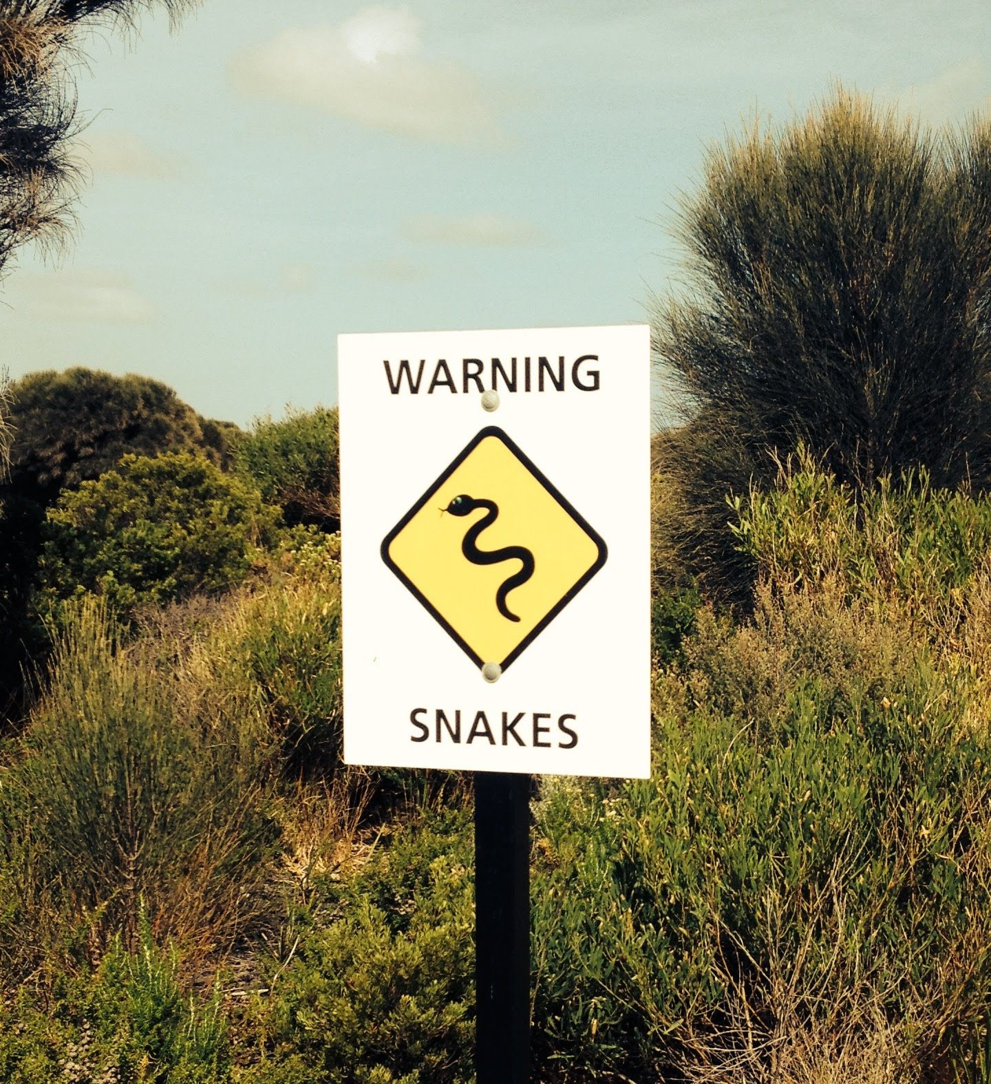 Snake warning on the Great Ocean Road