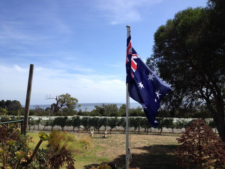 An Australian vineyard in Victoria on the way to Phillip Island