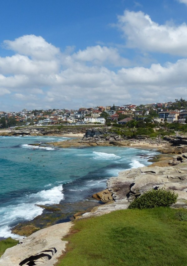 Bondi to Coogee Walk, Sydney