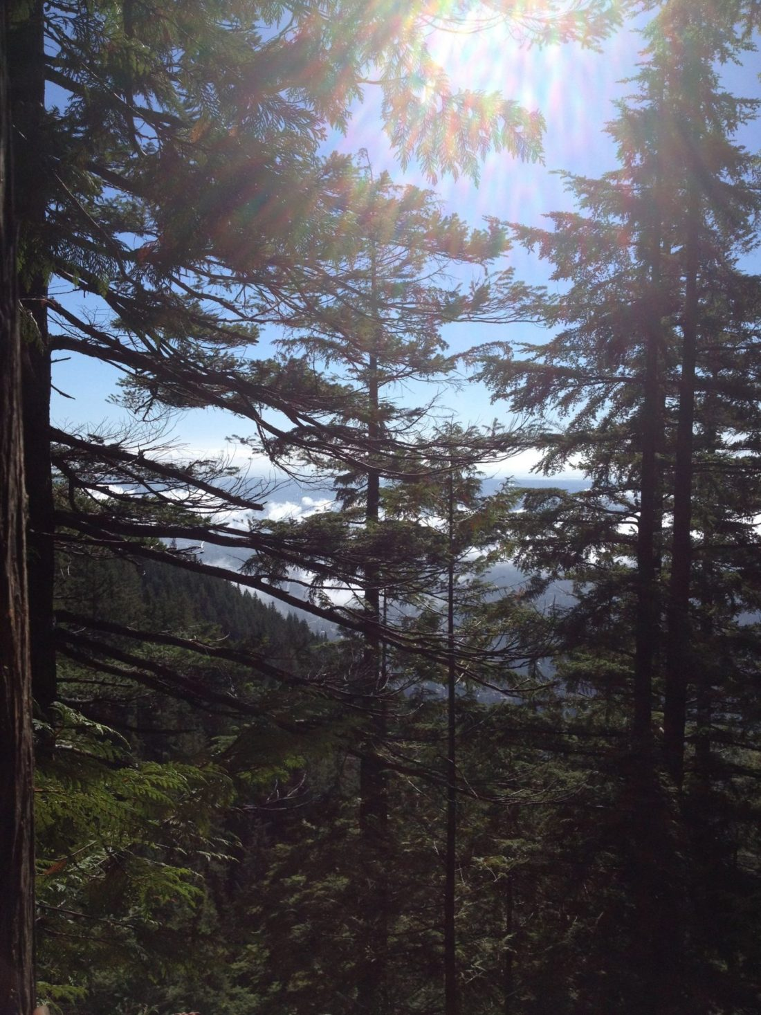 Views from the Grouse Grind, Vancouver