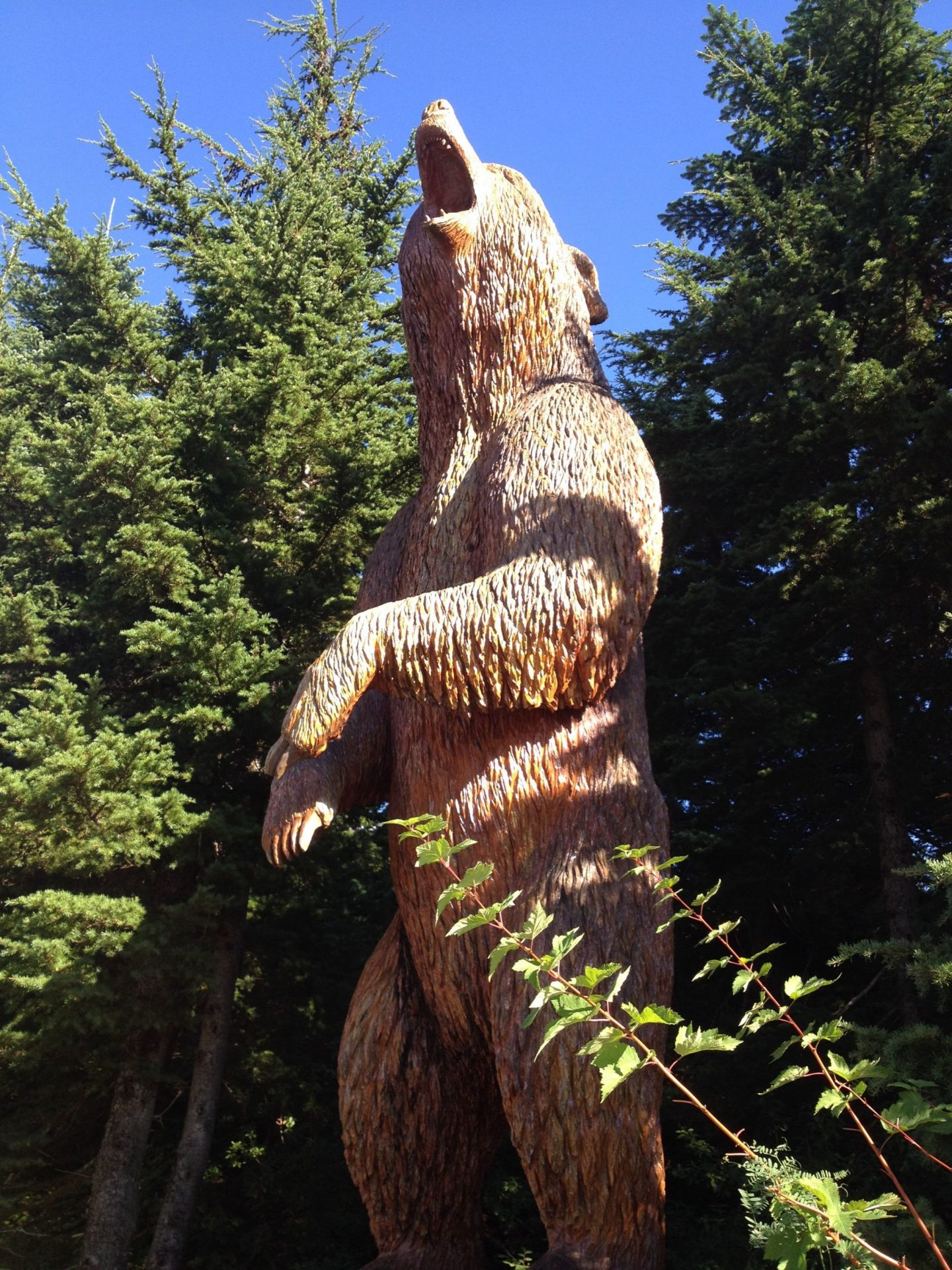 Wood bear carving at the top of Grouse Mountain, Vancouver