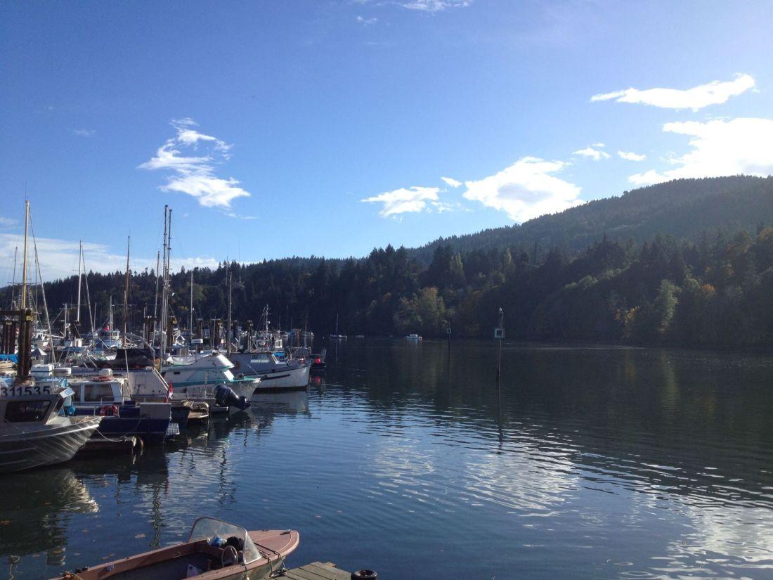 Salt Spring Harbour, British Columbia