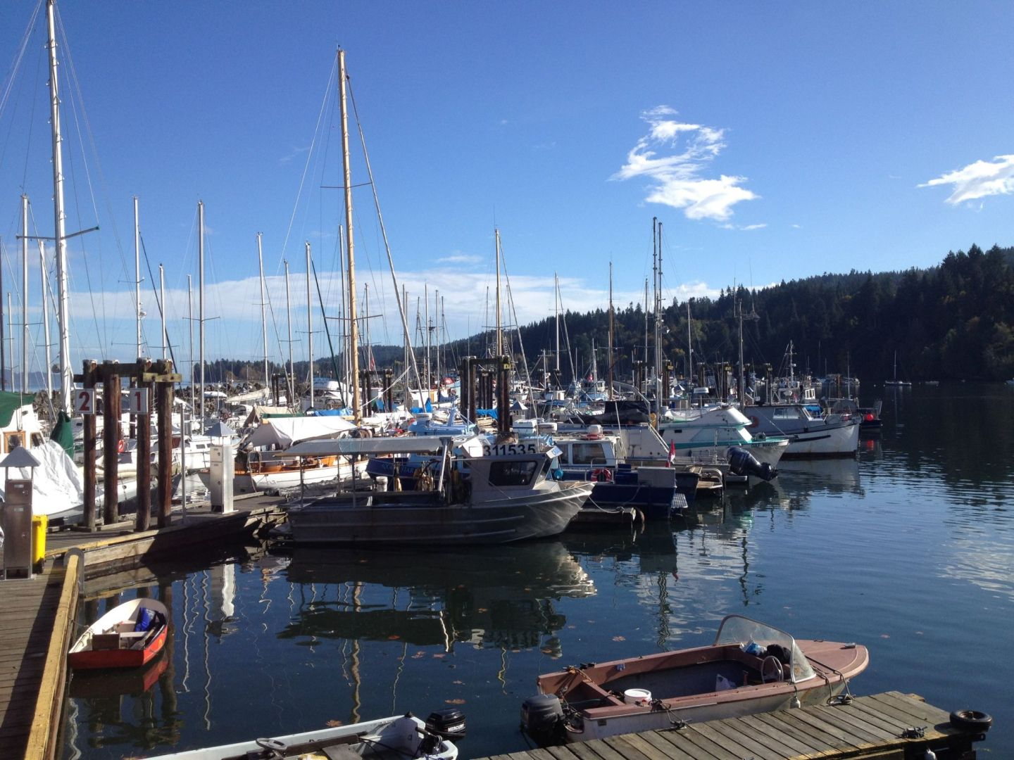 Salt Spring Harbour