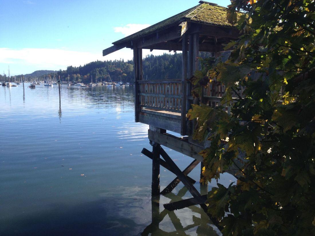 Views across Salt Spring Harbour
