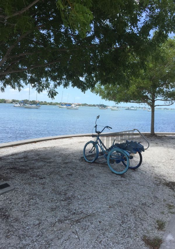 Bicycle on Sarasota Bay