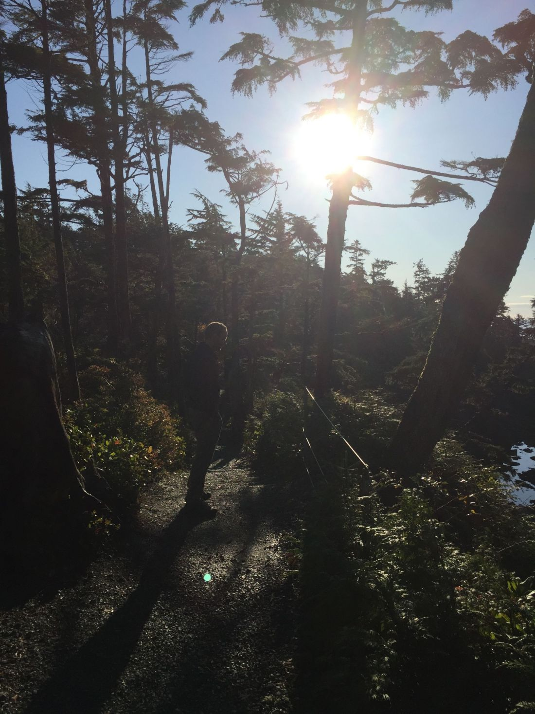 View from a hike near Black Rock Oceanfront Resort, Ucluelet