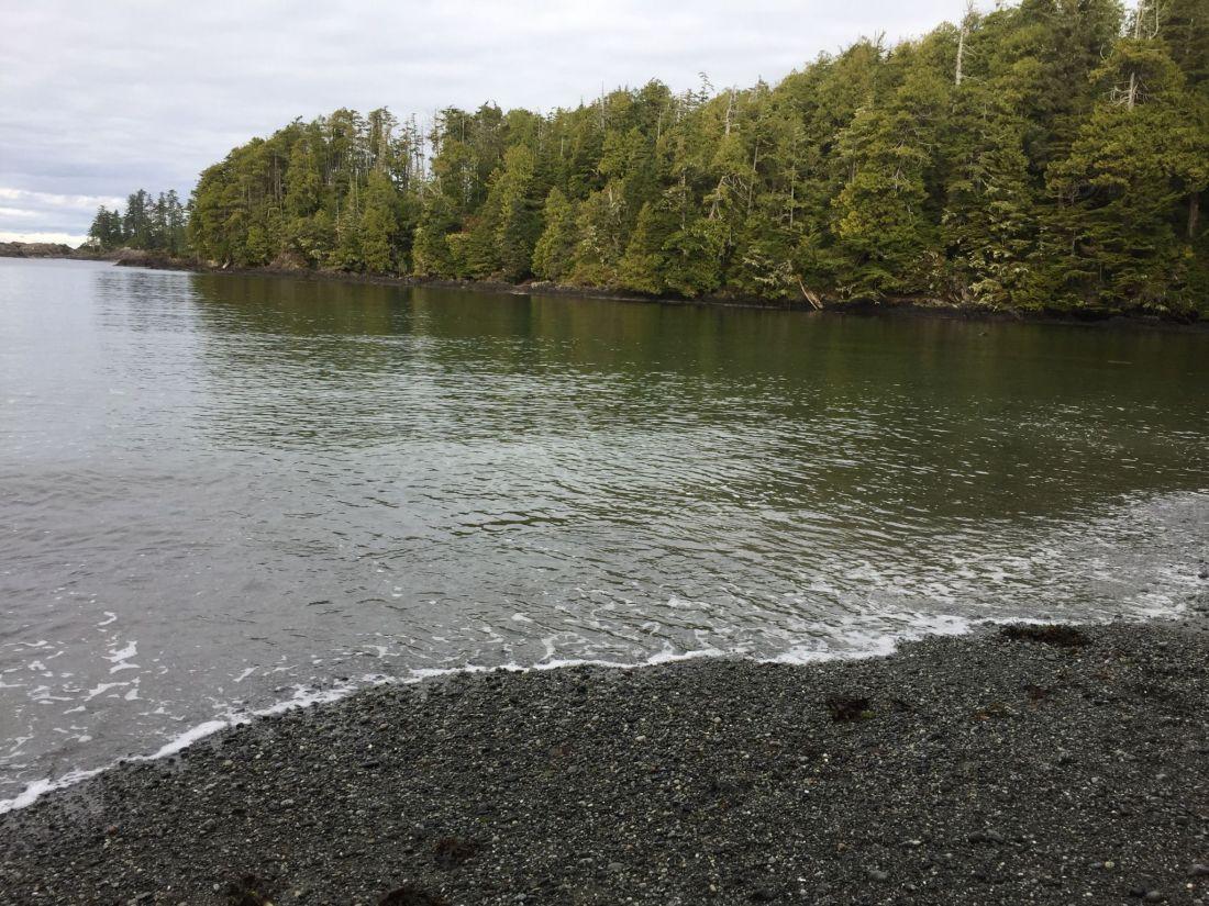 A beach near Ucluelet, Vancouver Island