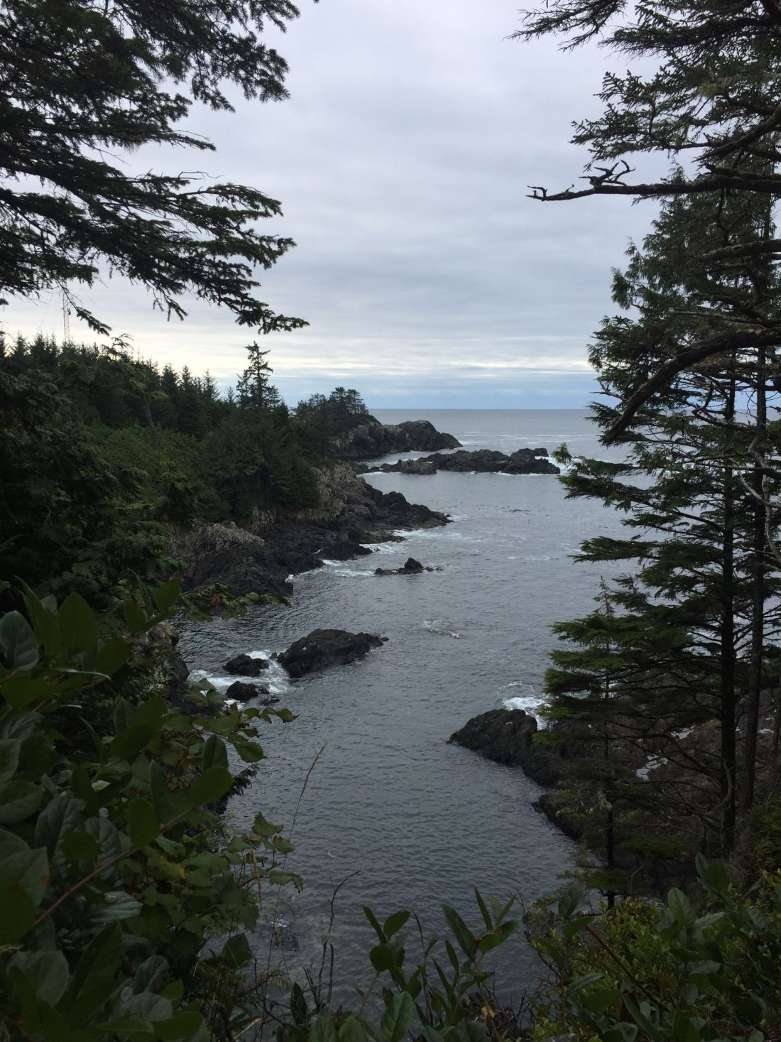 A lookout across the black rocks and ocean from the Wild Pacific Trail, near Tofino