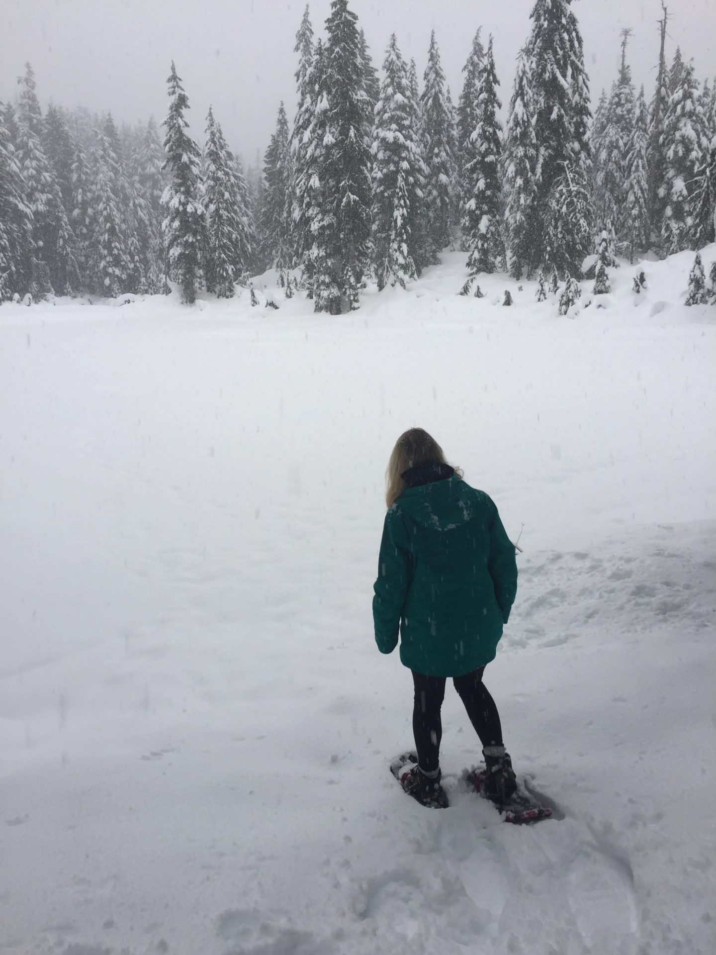 Snowshoeing on Mount Seymour, Vancouver