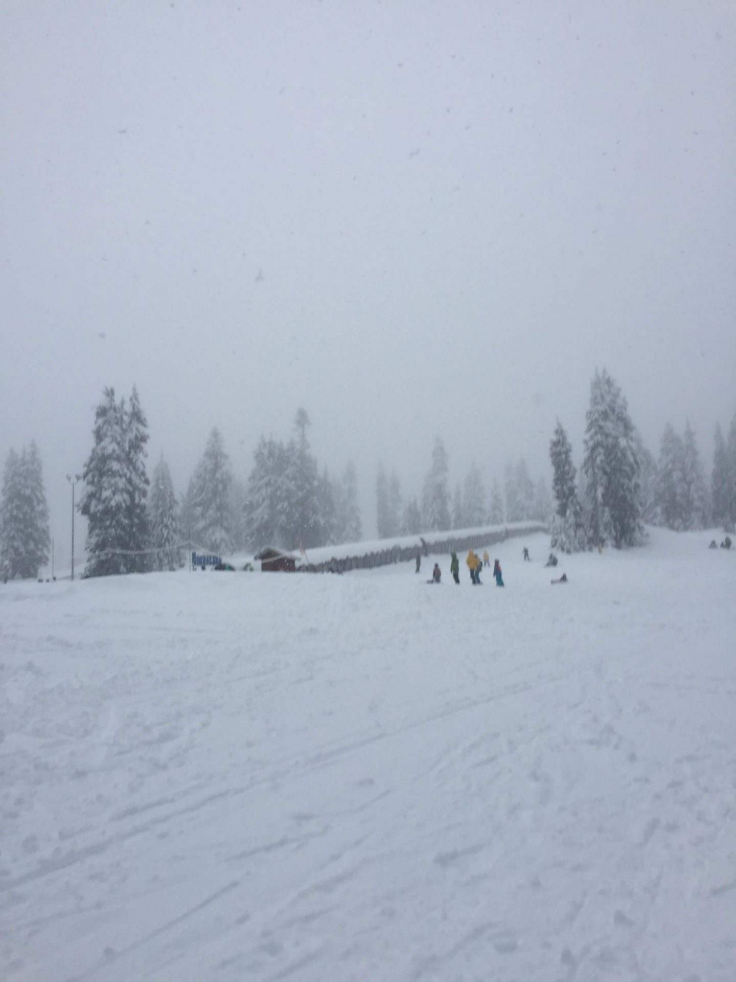 A winter wonderland on a Vancouver mountain