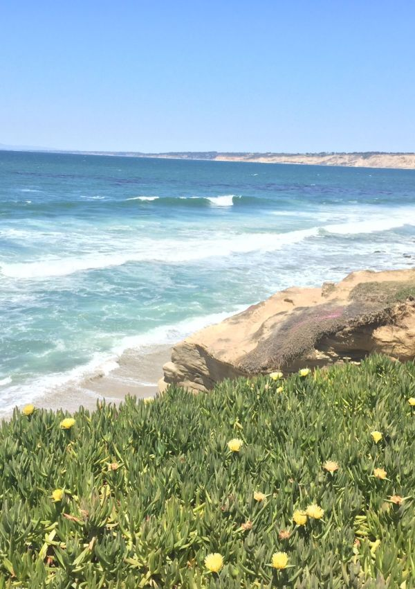 The views at La Jolla, San Diego
