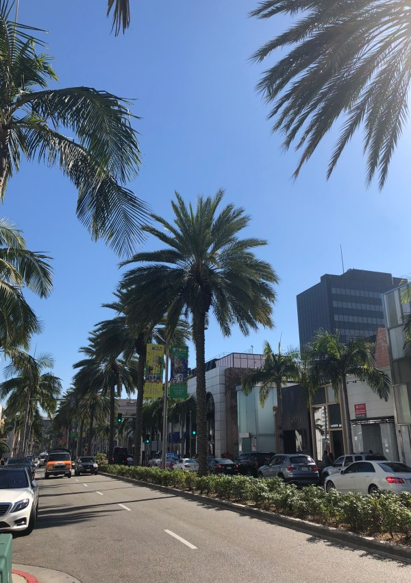 Rodeo Drive in Beverly Hills, LA