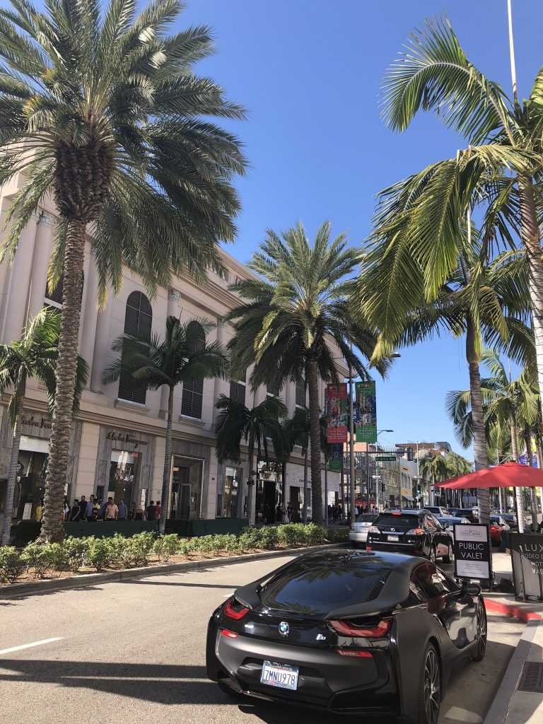 The palm trees of Rodeo Drive