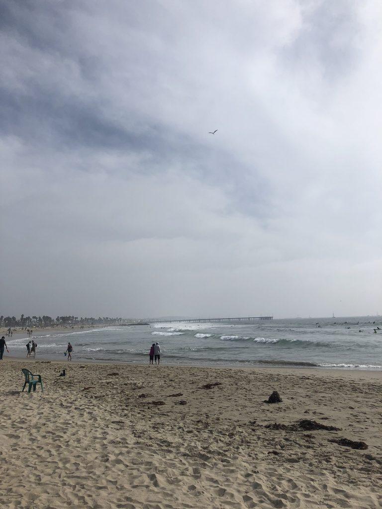 Watching the ocean at Venice Beach, California