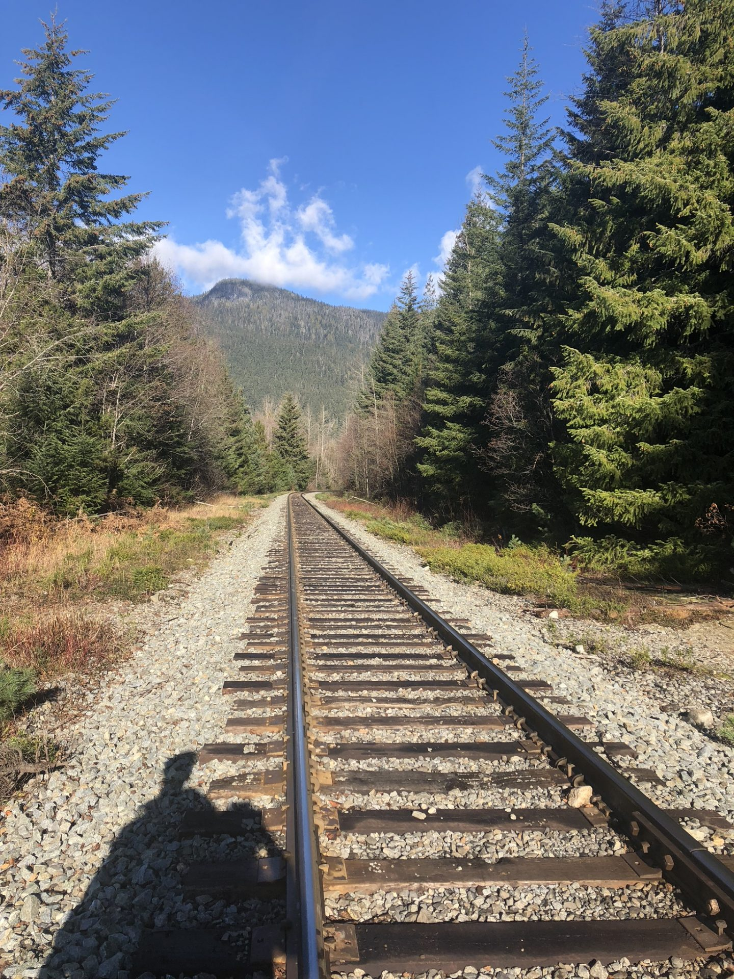 Train track near the mountains at Whistler, Canada