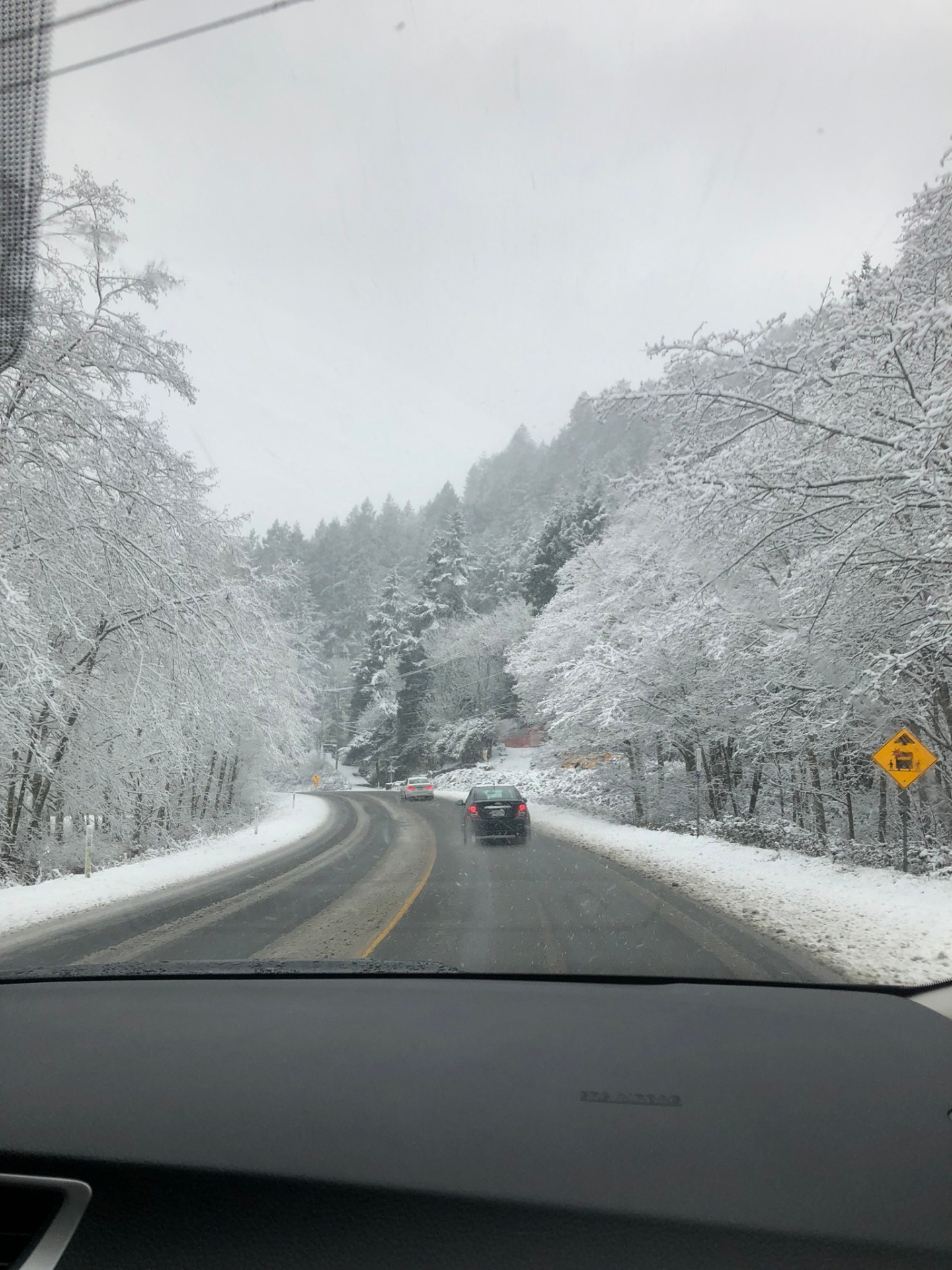 Snow on the road from Victoria, British Columbia to Port Renfrew
