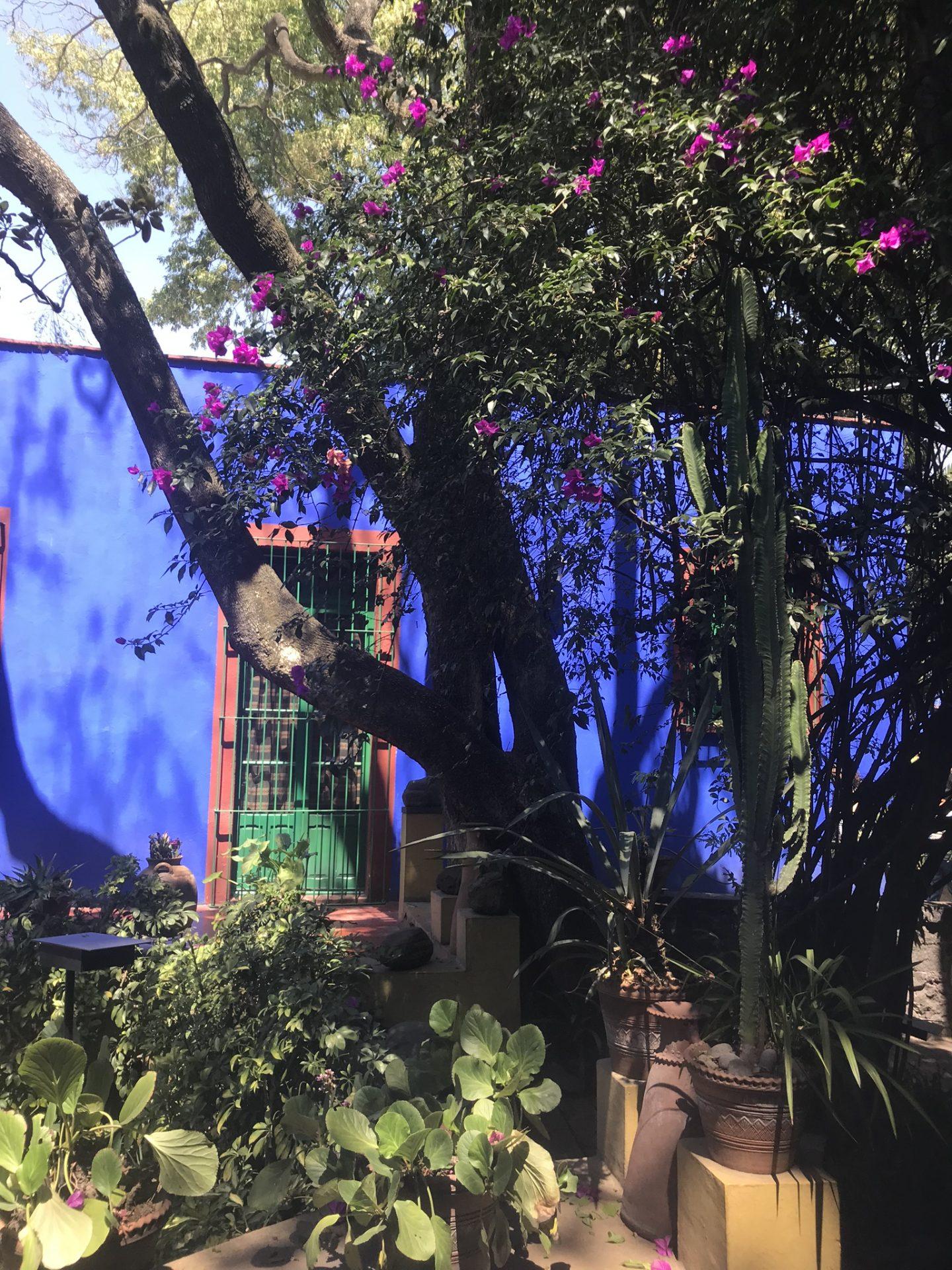 Gardens of Casa Azul, Frida Kahlo Museum