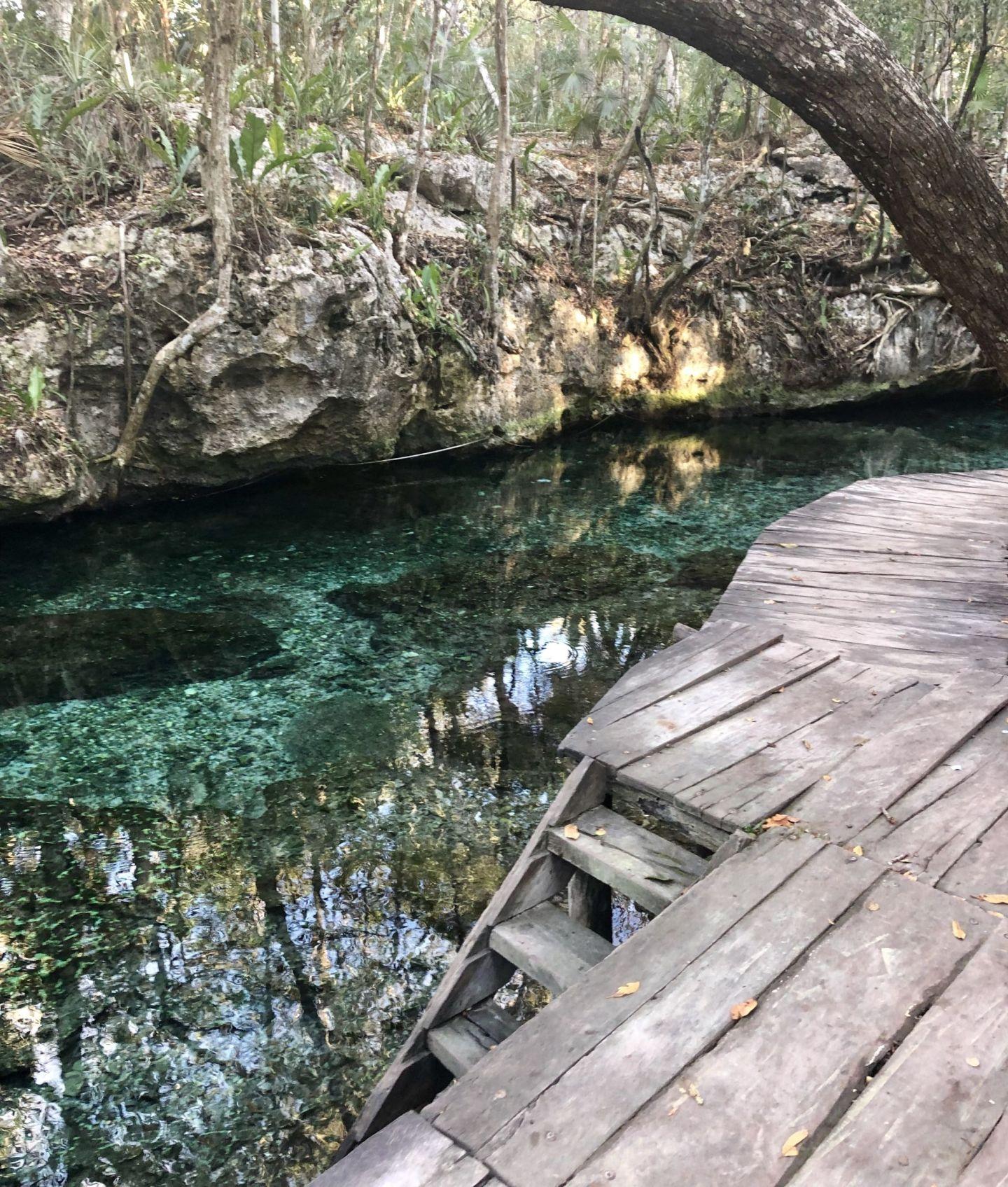 Cenote Gloria, Tulum, Mexico