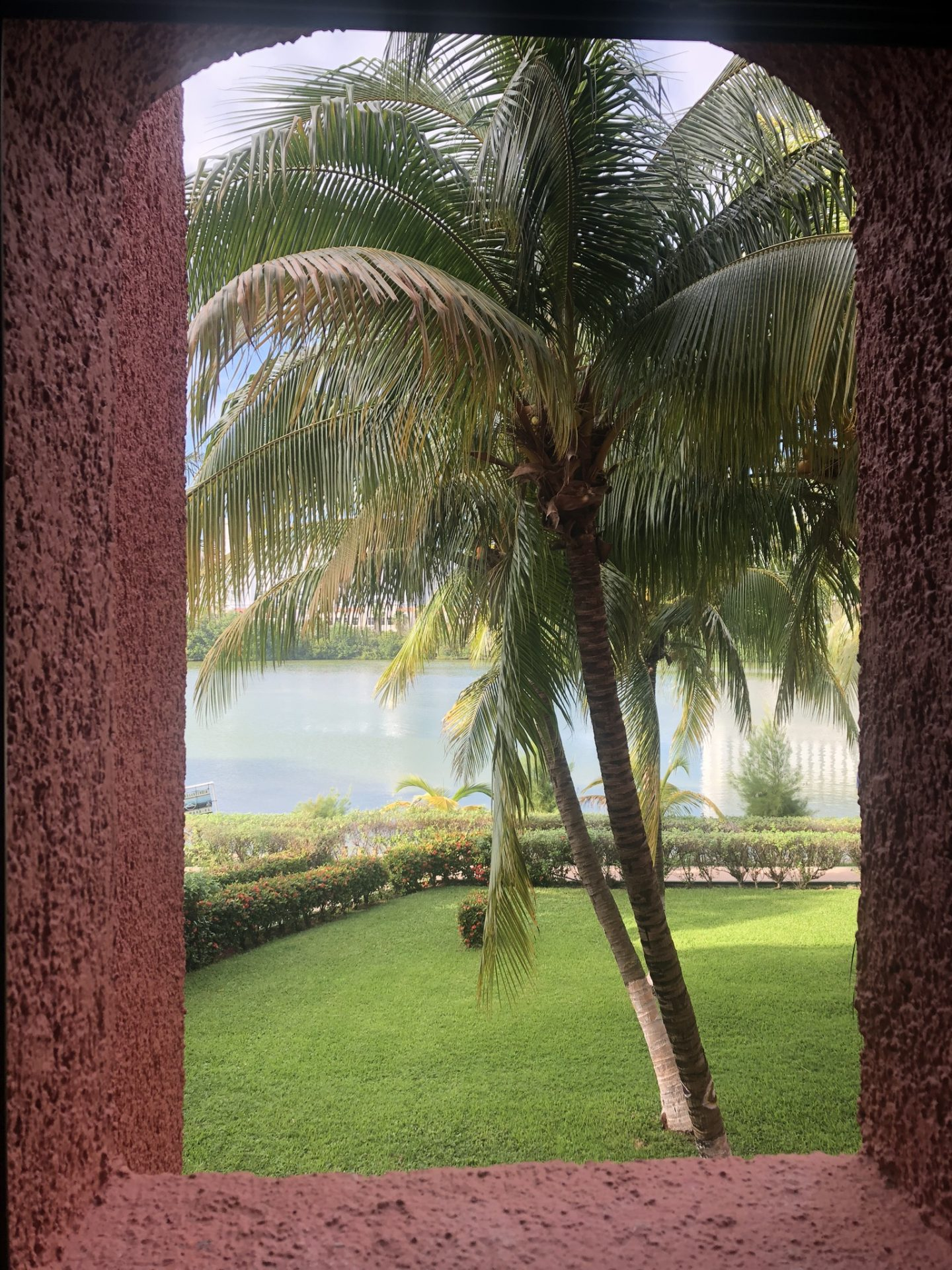View from our room in Selina, Cancun, Mexico